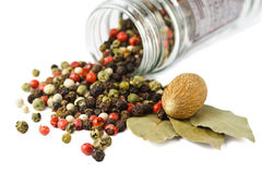 Spices: mixed peppercorns, bay leaves, nutmeg Stock Photo