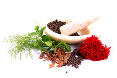 Spices and mortar Stock Image