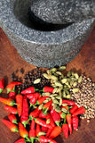 Spices with mortar and pestle Royalty Free Stock Photos