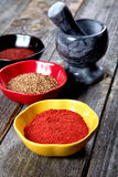 Spices and  mortar with  pestle on a old table Stock Images