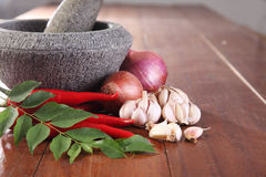 Spices and mortar Stock Images