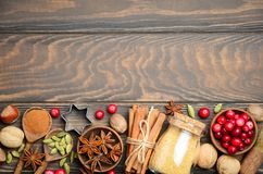 Spices Nuts and Berries for Christmas Baking. Top View Flat Lay Copy Space Royalty Free Stock Images