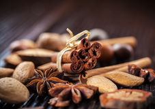 Spices and nuts for Christmas Stock Image