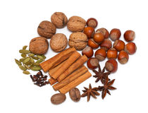 Spices and nuts Stock Photos