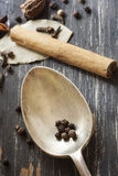 Spices and Old Spoon  on Timber Stock Image