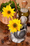 Spices, olive oil and sunflower flower in a mortar Stock Images