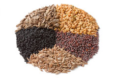 Spices for Panch Phoron. Isolated ingredients for Panch Phoron which is an Indian spice blend and which is made in equal measure from fennel seed, cumin seed royalty free stock images
