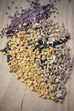 Spices for Panch Phoron. Which is an Indian blend and which is made in equal measure from fennel seed, cumin seed, mustard seed, fenugreek and black cumin Royalty Free Stock Photo