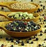 Spices; pepper, cardamom, mustard royalty free stock images
