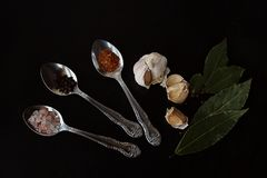 Spices and pepper with garlic in spoons royalty free stock photo