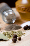 Spices: pepper, salt, bay leaves and herbs Stock Photos