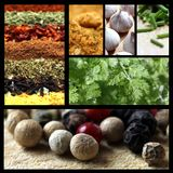 Spices picture mix Stock Images
