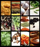 Spices picture mix Royalty Free Stock Photography