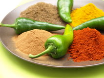 Spices on plate royalty free stock photo
