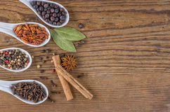 spices in porcelain spoons Stock Photos