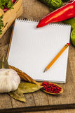 Spices and recipe book Stock Photography