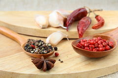 Spices - red and black pepper Royalty Free Stock Photo