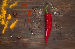 Spices, red pepper on a dark wooden  background. Background with spices.spices. Top view. Close up,  copy space. Spices, red pepper on a dark wooden  background Royalty Free Stock Photos
