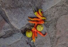 Spices on road as a donation to Godness stock image