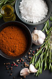 Spices, rosemary, allspice, garlic, oil and salt Royalty Free Stock Photo