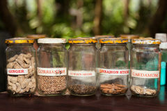 Spices in rustic style. Spices in old glass jars in a village in the jungle Royalty Free Stock Image
