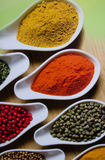 Spices for sale on local market. In India Royalty Free Stock Photos