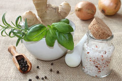 Spices - salt, pepper and herbs Royalty Free Stock Photography