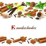 Spices seamless borders Stock Photos