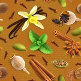 Spices seamless pattern Stock Image