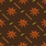 Spices seamless pattern. Star anise, cardamon, cinnamon stick. Vector seamless pattern. Star anise, cardamon, cinnamon stick Royalty Free Stock Image