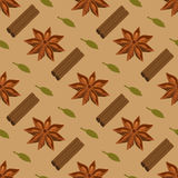 Spices seamless pattern. Star anise, cardamon, cinnamon sticks Stock Images