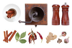 Spices and seasonings for food. The mill and salt shaker. Spices and seasonings for food. The mill and salt shaker isolated on white background Stock Images