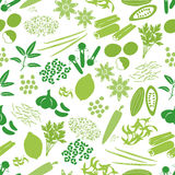 Spices and seasonings icons color seamless pattern Stock Images