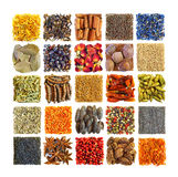 Spices and seasonings in square composition Stock Images