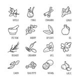 Spices and seasonings thin line web icons Royalty Free Stock Photography