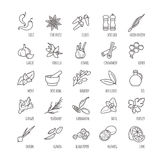 Spices and seasonings vector icons Stock Photos