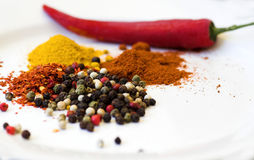 Spices selection stock image