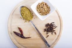 Spices. A selection of eastern spices: coriander, chili, cloves, and fennel seeds on a brown board Stock Photos
