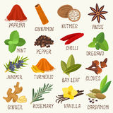 Spices  set. Spices for cooking  set Stock Photography