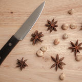 Cardamon and Star Anise Royalty Free Stock Photo