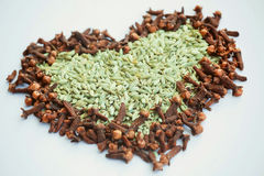 Spices in shape of hot heart. Stock Images