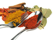 Spices and silverware Royalty Free Stock Photo