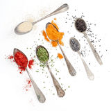 Spices on silverware spoons and white background Stock Image