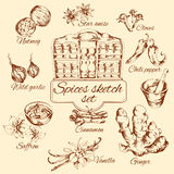 Spices Sketch Set Royalty Free Stock Photo