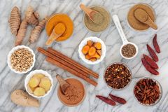 Spices for Slimming royalty free stock photography