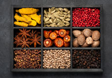 Spices, spicy, seasonings  in wooden box. Royalty Free Stock Photo