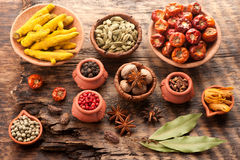 Spices and spicy Royalty Free Stock Photography