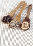 Spices on spoon Stock Photography