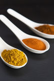 Spices in Spoon. Various condiment in ceramic spoons over a dark background royalty free stock image