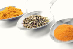 Spices on a spoon Royalty Free Stock Photography
